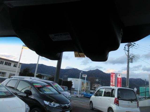 XS デュアルカメラ 4WD(16枚目)