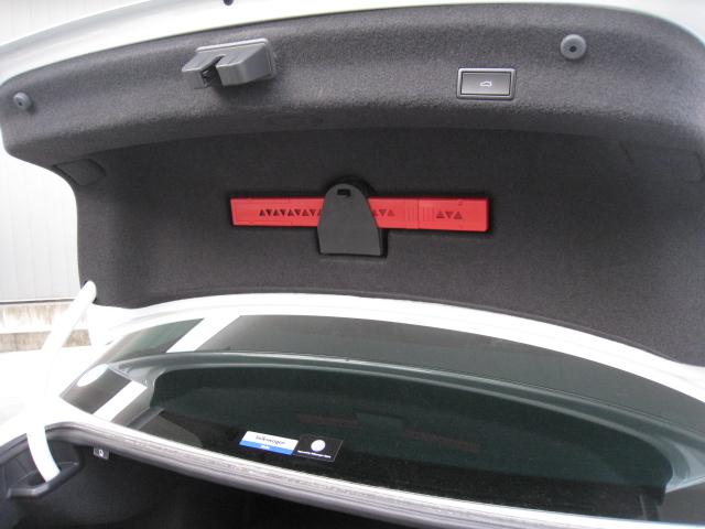 「フォルクスワーゲン」「VW パサート」「セダン」「山梨県」の中古車16