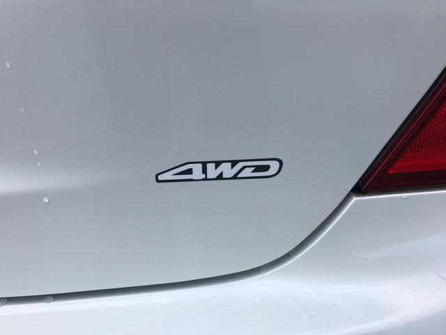 ラグゼール 4WD 寒冷地仕様 ナビ TV バックカメラ(15枚目)