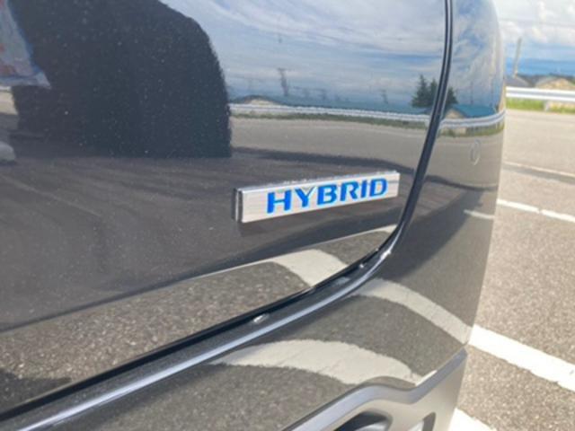 G 届出済未使用車 アイドリングストップ LEDヘッド(11枚目)