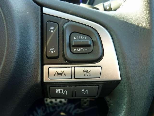 2.5 リミテッド 4WD (15枚目)