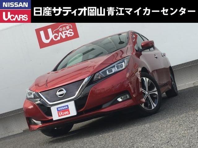 日産 G EV専用ナビ・全周囲カメラ・フルセグTV