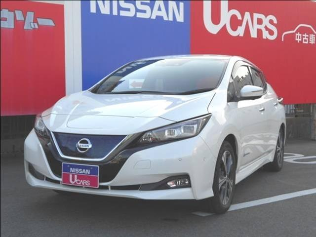 G 電気自動車リーフGグレード・ドラレコ付(1枚目)