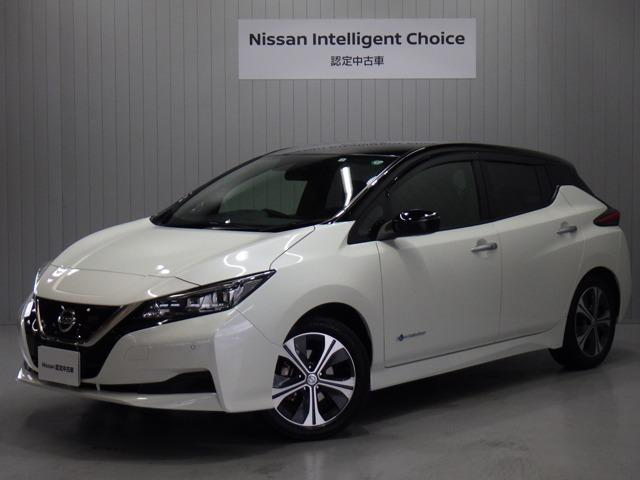 日産 X EV専用ナビ&プロパイロット