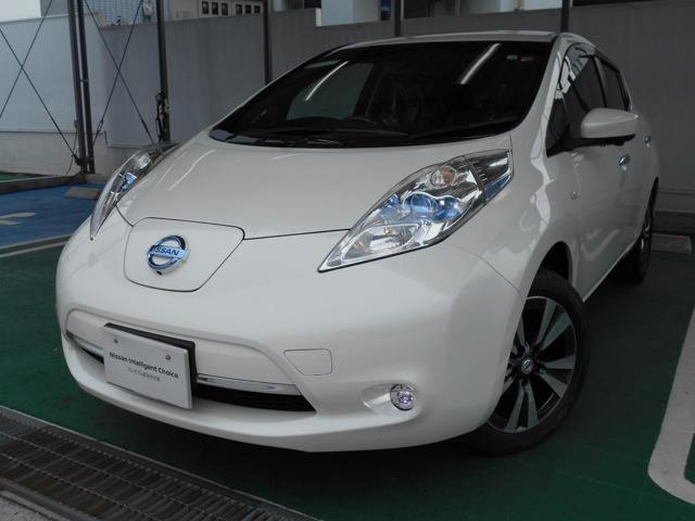 日産 30kWh G バッテリー12セグメント・LEDライト