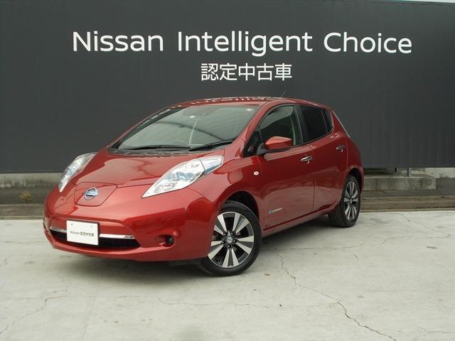 日産 30kWh X 当社レンタカー/11セグメント