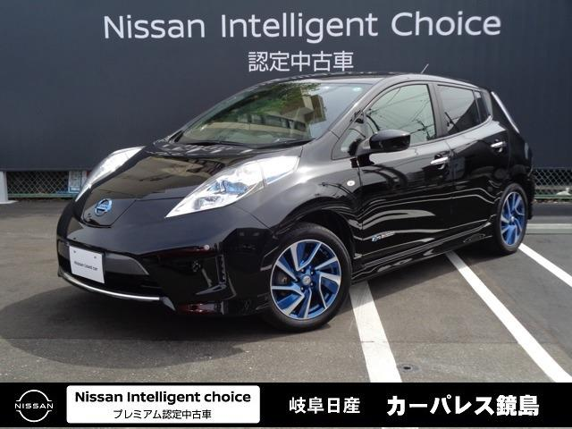 日産 30kWh X エアロスタイル サンクス エディション 12セグ/被害軽減ブレーキ/LEDヘッドライト