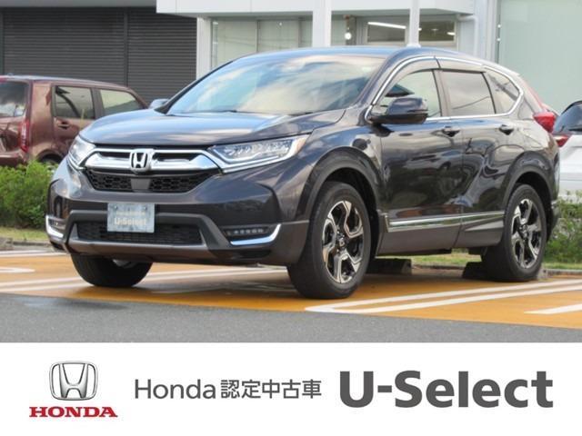 ホンダ EX・マスターピース 普通車 SUV ワンオーナー ETC