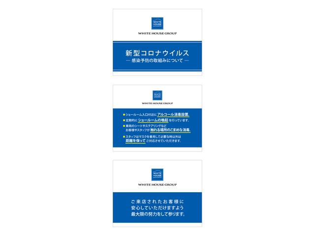CROSSCITY BLUEHDI/特別仕様車/新車保証継承/クリーンディーゼル車/ハーフレザーシート/電動シート付き/カープレイ対応/アンドロイドオート対応/ACC(64枚目)