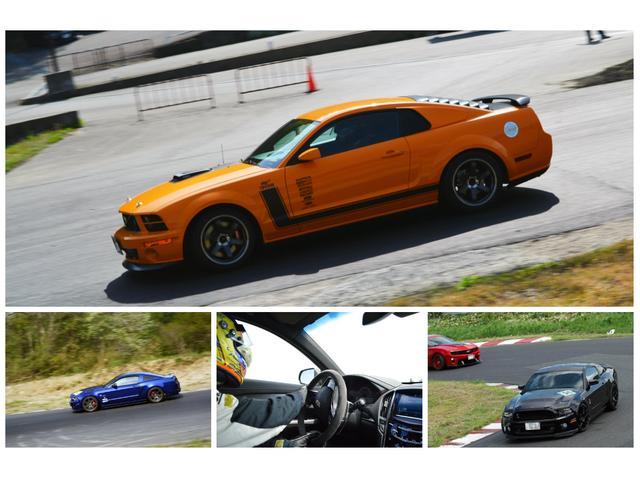 V8 GT Premium 新車並行車(15枚目)