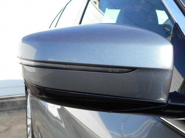 523iラグジュアリー 2年BPSデモ禁煙認定車(6枚目)