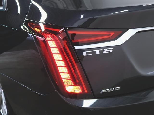 プラチナム 1ヶ月保証 新車保証 本革 シートヒーター シートエアコン パワーシート フロアマット メモリーナビ マルチ 音楽プレーヤー接続 Bluetooth接続 フルセグ ETC ガラスルーフ LED(9枚目)