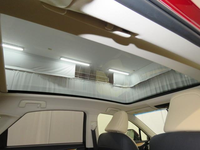 NX300h VER-L AWD(13枚目)