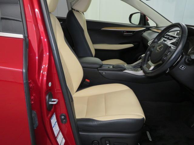 NX300h VER-L AWD(14枚目)