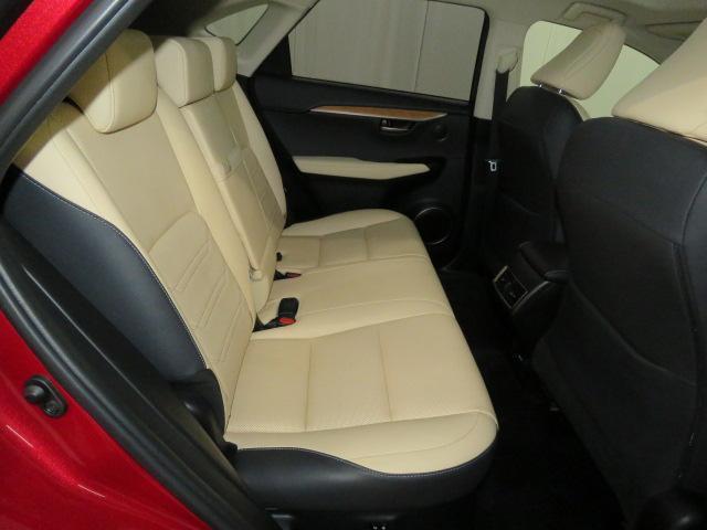 NX300h VER-L AWD(17枚目)