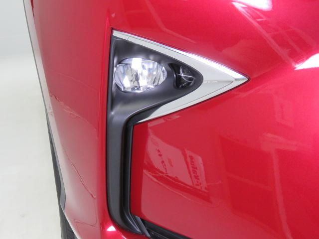RX200t VER-L AWD(18枚目)