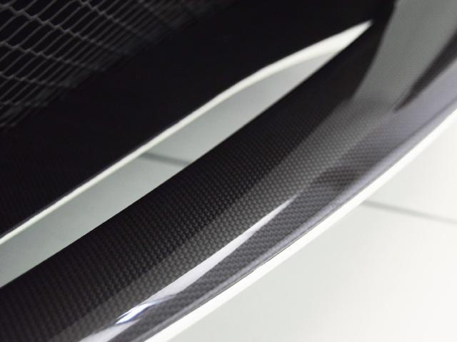 ベースグレード F1 カーボンPKG Fリフティング(17枚目)