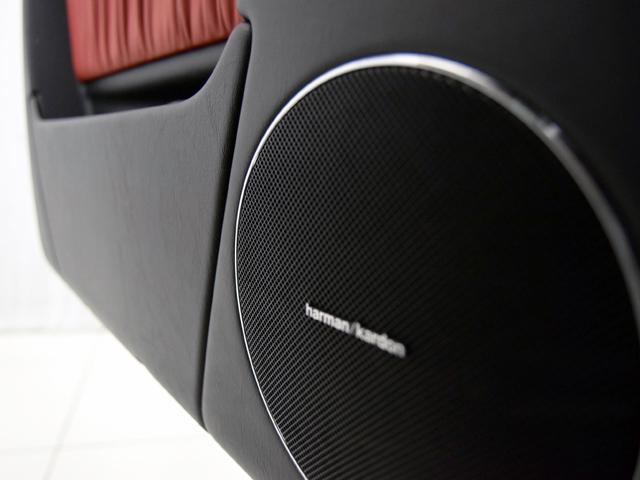 G550 クラシックレッドデジーノレザーシート サイドカメラ(16枚目)