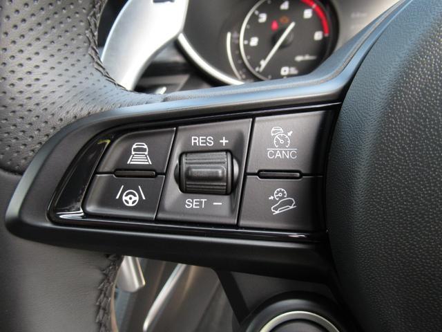 2.2ターボ ディーゼルQ4 ターボディーゼル スプリント 20インチアルミホイル リアスキッドプレート ミラーカバー カーテシランプ 新車保証継承 ロードサービス付(23枚目)