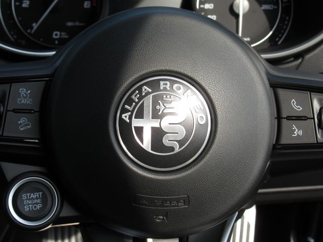 2.2ターボ ディーゼルQ4 ターボディーゼル スプリント 20インチアルミホイル リアスキッドプレート ミラーカバー カーテシランプ 新車保証継承 ロードサービス付(24枚目)