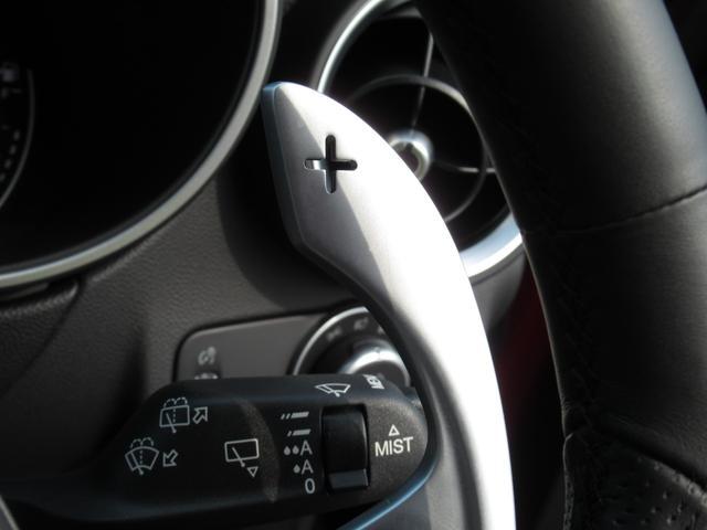 2.2ターボ ディーゼルQ4 ターボディーゼル スプリント 20インチアルミホイル リアスキッドプレート ミラーカバー カーテシランプ 新車保証継承 ロードサービス付(30枚目)