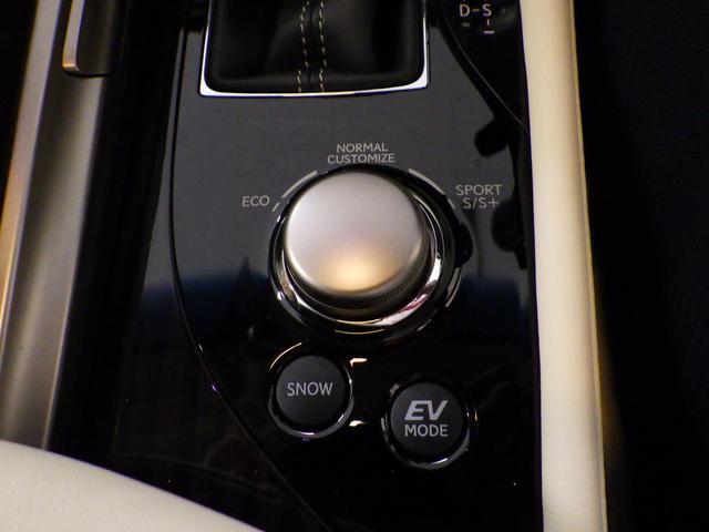 GS300h バージョンL 内装色 リッチクリーム(9枚目)