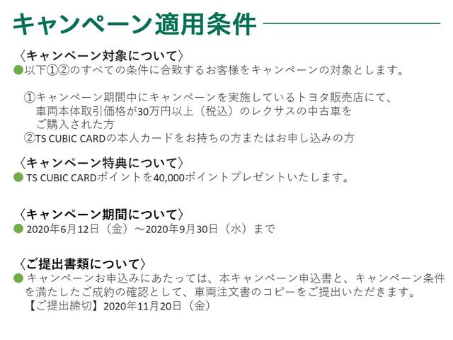 RX200t バージョンL(31枚目)