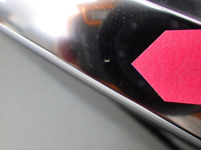 RX200t バージョンL(23枚目)