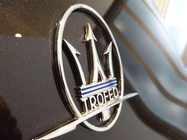 トロフェオ V8 フェラーリエンジン 22インチホイール(19枚目)
