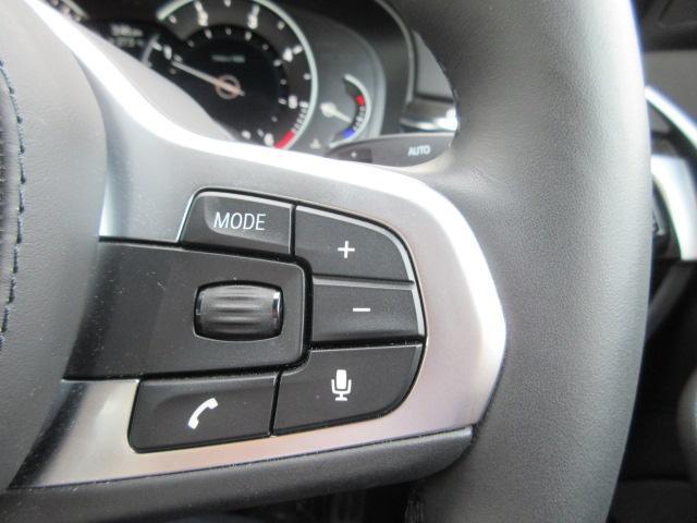 523d xDrive Mスピリットデモカー2年BPS(20枚目)