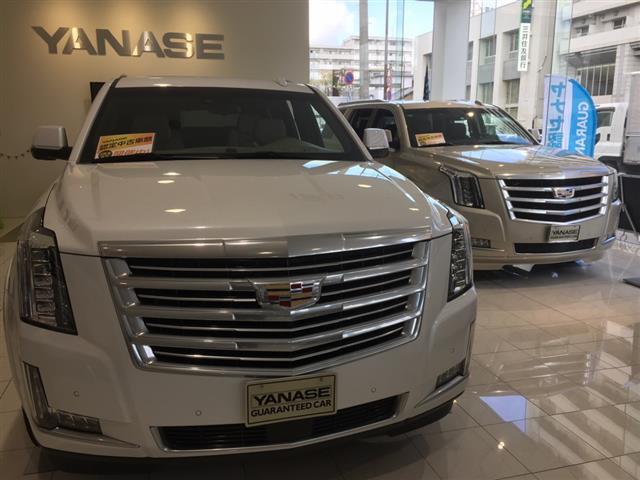 キャデラック キャデラックエスカレード Platinum 1年保証 新車保証