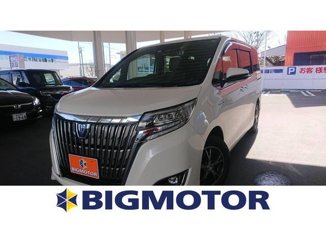 トヨタ ハイブリッドGi プレミアムパッケージ フリップダウン