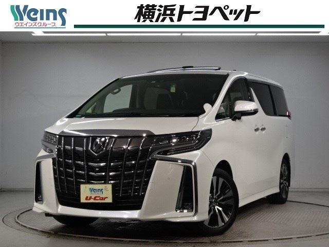トヨタ アルファード 2.5S-C BIG-X・後席モニター・黒革・サンルーフ