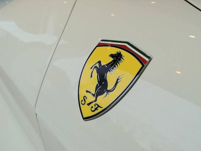F1 DCT 認定中古車保証 7年メンテナンス(15枚目)