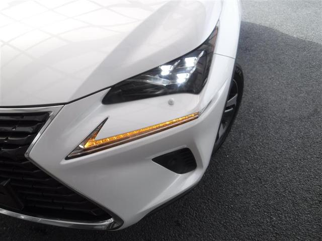 NX300 Iパッケージ ムーンルーフ ルーフレール 18インチアルミホイール アクセサリーコンセント AC100V・100W パーキングサポートブレーキ スペアタイヤ メッキラゲージロアガーニッシュ 認定中古車CPO(11枚目)