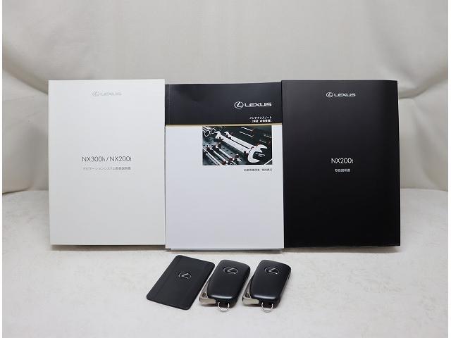 NX200t Iパッケージ 18インチアルミホイール プリクラッシュセーフティシステム 認定中古車CPO(15枚目)