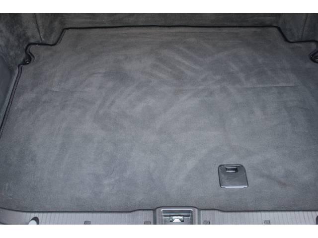 S500L Lorinser Edition DTM 右H(9枚目)