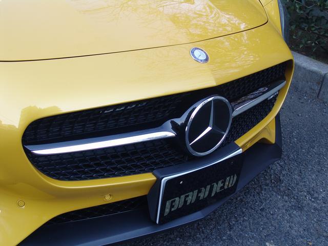 S AMGダイナミックプラスP エディションスポイラー(13枚目)