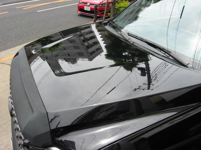 「その他」「タンドラ」「SUV・クロカン」「東京都」の中古車17