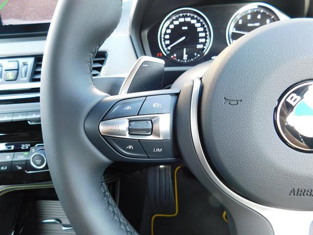 xDrive 20i MスポーツX 弊社デモカー・20インチAW・追従式クルーズコントロール(29枚目)