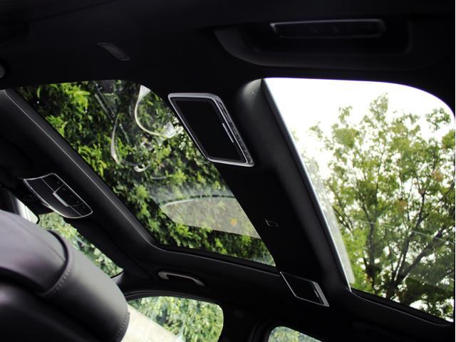 S300hエクスクルーシブ360度カメラ ヘッドアップD禁煙(20枚目)