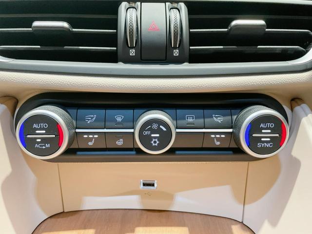スーパー 当店ユーザー下取り車 衝突軽減システム 追従機能 Applecarplay Bカメラ ETC 本革シート シートヒーター電動シート(24枚目)
