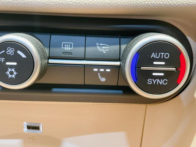 スーパー 当店ユーザー下取り車 衝突軽減システム 追従機能 Applecarplay Bカメラ ETC 本革シート シートヒーター電動シート(25枚目)