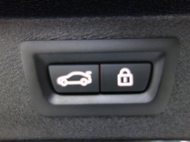 xDrive 35d Mスポーツ ブラックレザー サンルーフ(12枚目)