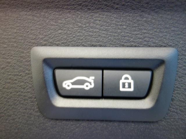 xDrive 18d Mスポーツ サンルーフ ACC(14枚目)