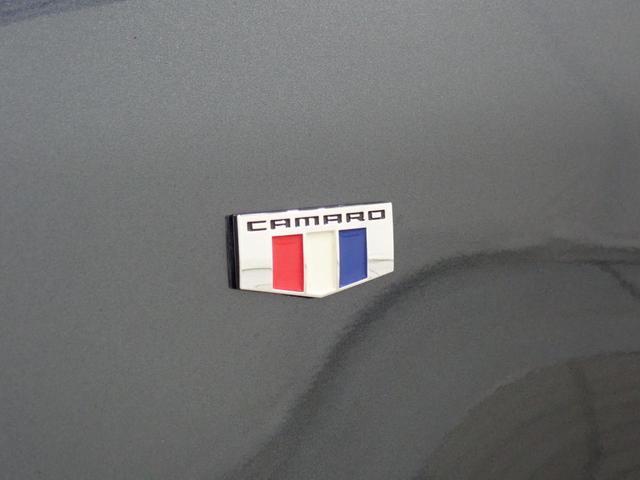SS スタイリングスポーツエディション 認定中古車 AppleCarplay AndoridAuto RECAROハーフレザーシート シートヒーター シートクーラー ETC ステアリングヒーター パドルシフト Bluetooth接続(23枚目)