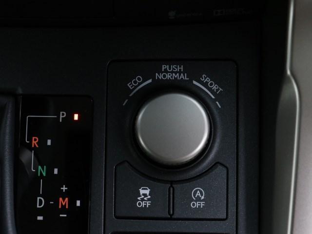 NX200t Iパッケージ(13枚目)