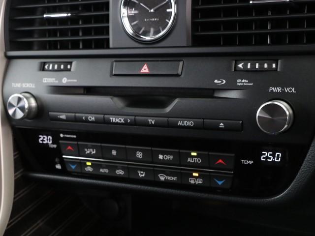 RX200t バージョンL サンルーフ 革シート(10枚目)