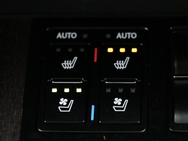 RX200t バージョンL サンルーフ 革シート(11枚目)