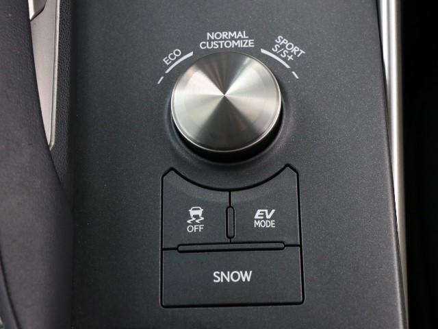 IS300h Fスポーツ 本革シート ワンオーナー車 LED(13枚目)